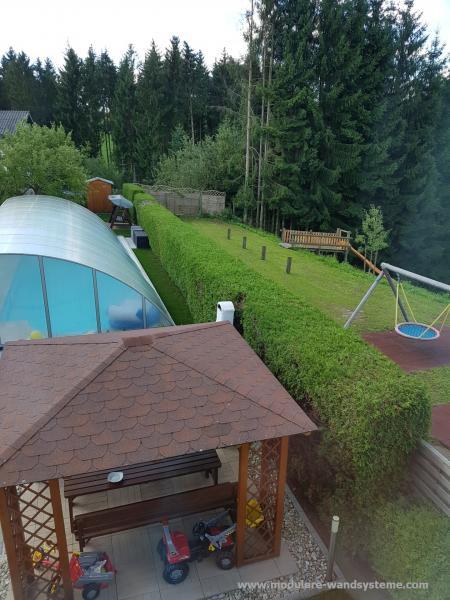 Thujahecke-als-Sichtschutz-am-Pool